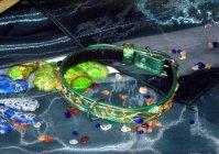 Ошейник для собак: Самоцветная симфония / Collar for dogs: Precious Symphony