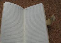 """Записная книжка с ручной росписью """"Пионы"""" / Notebook with hand-painted """"Peony"""""""