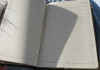 """Ежедневник с объёмной росписью """"МОЭСК"""" / Datebook with surround painted """"MOESK"""""""