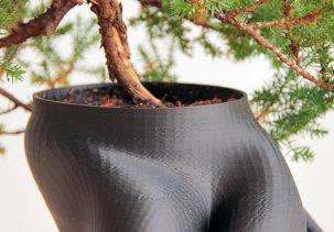 Горшок для бонсай - 3D модель