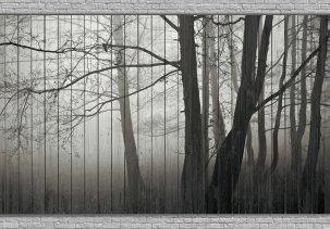 Картина на досках с уникальной экспозицией